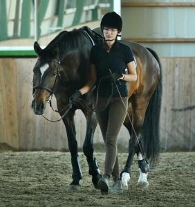 Rennon ja rauhallisen hevosen silmät ovat kirkkaat ja ilmeikkäät, olemus levollinen, mutta eloisa.