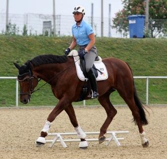 The horse flexes acceptingly towards the bit. Uta Gräf and Damon Jerome H, photo Silke Rottermann