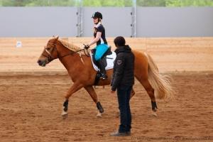 Etupainoisesti liikkuva hevonen on koulutettava korjaamaan tasapainoaan, jotta se pystyy tekemään ratsastuksessa vaadittavia harjoitteita päätymättä nojaamaan ohjastuntumaan tai jäykistämättä kehoaan. Kuvan hevonen ei osaa vielä kannatella rintakehäänsä ja siirtää kehonsa painopistettä taaksepäin.